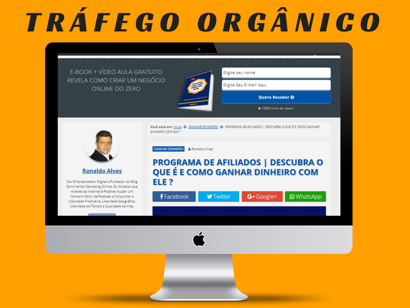 CRIAR NEGÓCIO ONLINE - TRÁFEGO ORGÂNICO